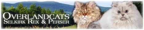 Overlandcats